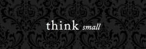thinksmall3